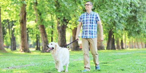 Animal Care Center's 5 Ways to Spruce Up Dog Walks, Montgomery, Ohio
