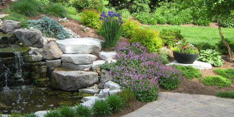 5 Healthy Reasons to Start Gardening, Delhi, Ohio