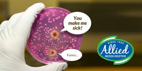 Cincinnati Plumbers Dirtiest Germ Tips!, Norwood, Ohio