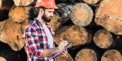 How Is Timber Made?, Clarksville, Arkansas