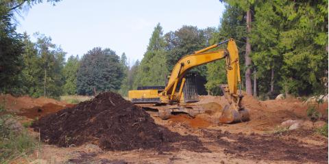 What to Look for in Land Clearing Contractors, Clarksville, Texas