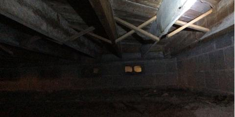 The Importance of a Clean Crawlspace, St. Augustine, Florida