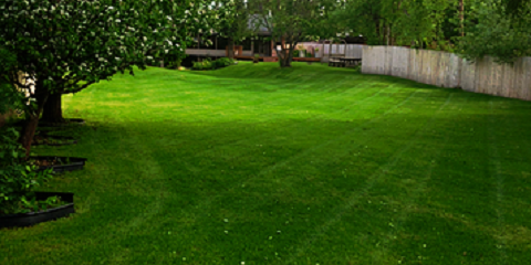 Spruce Up Your Landscaping With Tree & Shrub Installation by TurfPro Lawn & Snow!, Anchorage, Alaska