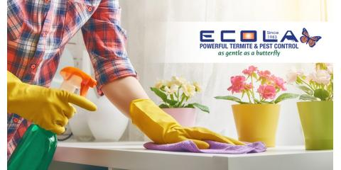 Give your home a deep spring cleaning!, Anaheim-Santa Ana-Garden Grove, California