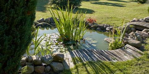 5 Steps for Opening Your Backyard Pond, Sagamore Hills, Ohio