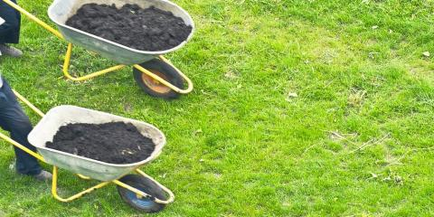Your Guide to Choosing the Best Lawn Fertilizer, Clifton, Texas