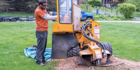4 FAQ About Stump Grinding, Providence, North Carolina