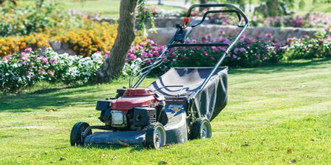 What to Expect During Regularly Scheduled Landscape Maintenance, Denver, Colorado