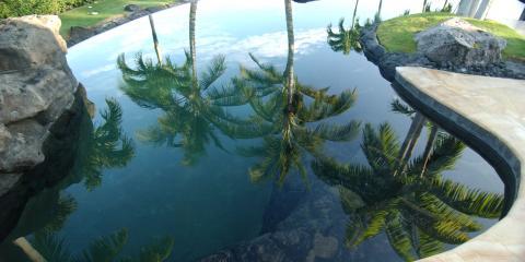 Coconut Palms In The Hawaiian Garden, Eleele-Kalaheo, Hawaii