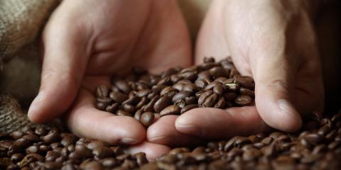 What's the Difference Between Light, Medium & Dark Roast Coffee?, Central Coast, California
