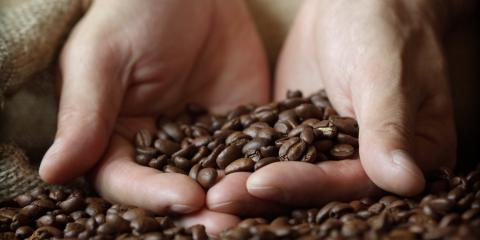 What's the Difference Between Light, Medium & Dark Roast Coffee?, Baltimore, Maryland