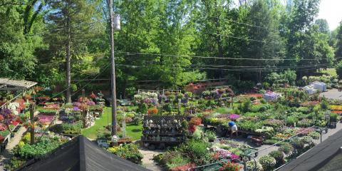 Colonial Gardens, Garden Centers, Services, Fairfield, Connecticut