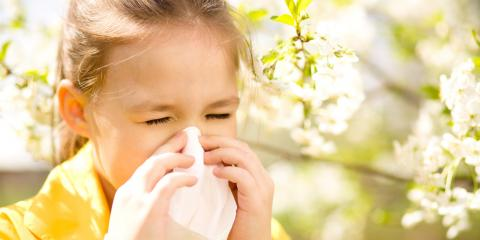 3 Ways to Minimize Allergies This Spring, Clarksville, Maryland