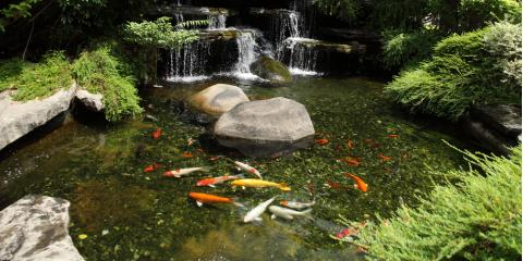 3 Details a Landscaping Contractor Can Add to Your Pond This Spring , Columbia, Missouri