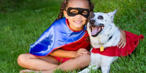 The Do's & Don'ts of Dressing Up Pets, Columbia, Missouri