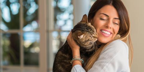 Why Do Cats Purr?, Columbia, Missouri