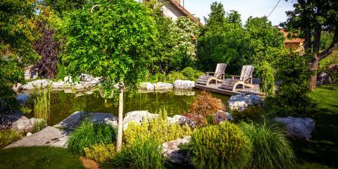 4 FAQ About Backyard Water Gardens, Missouri, Missouri