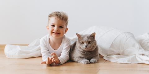 3 Benefits of Growing Up With Pets, Clarksville, Maryland