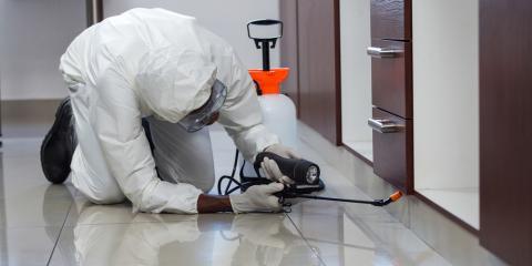 3 Ways Regular Pest Control Inspections Will Benefit Your Business, Columbus, North Carolina
