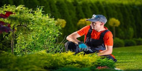 5 Tips for Selecting the Ideal Commercial Landscaping Company, Orange Beach, Alabama