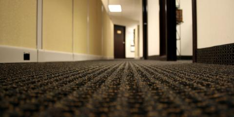 Commercial Carpet Cleaning 101: What's Hiding in Your Office Floors? , Elko, Nevada