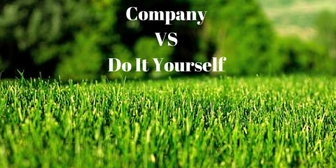 Leave Lawncare Chores to The Professionals at Dr. Green Lawns, Wolcott, Connecticut