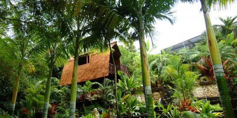 Kona Landscape Firm Provides a Complete Landscape Package, Kailua, Hawaii