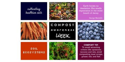Compost Awareness Week, Brandon, Florida