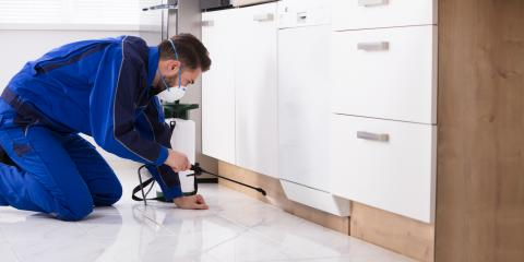 A Landlord's Guide to Pest Control Services, Mooresville, North Carolina