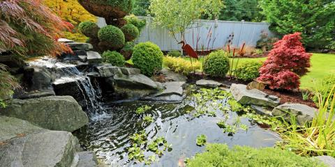 The Benefits of Having a Pond at Home, Monroe, Ohio
