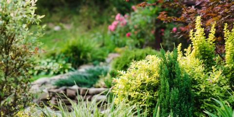 4 Landscaping Trends That Will Be Big This Summer, Danley, Arkansas