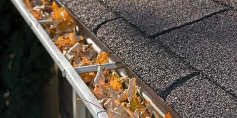 5 Types of Debris Commonly Found During Gutter Cleaning, Cookeville, Tennessee