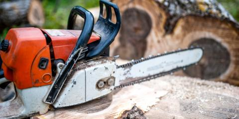 Common Questions About Stump Grinding, 9, Tennessee