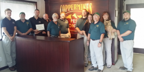 Coppermines Pest Control, Pest Control, Services, Murrayville, Georgia