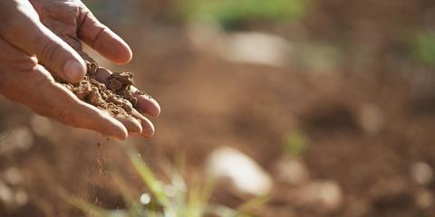 3 Things to Look for in Soil When Picking Up Your Landscaping Materials, North Corbin, Kentucky