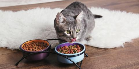 Pamper Your Pet With These Discounted Treats & Vitamins, Visalia, California