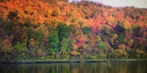 Enjoy Beautiful Fall Colors During Your Next White River Fishing Trip, Whiteville, Arkansas