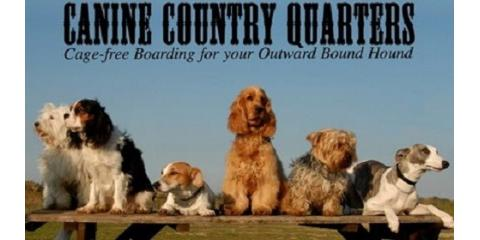 Canine Country Quarters, Pet Boarding and Sitting, Services, New York, New York