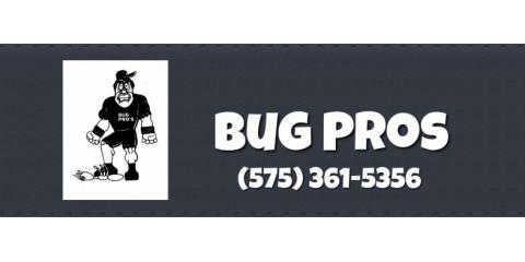 Get Rid of Ants With Tips From Bug Pros Pest Control, Carlsbad, New Mexico