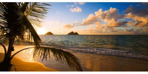 Kamehameha Realty, Real Estate Agents & Brokers, Real Estate, Aiea, Hawaii