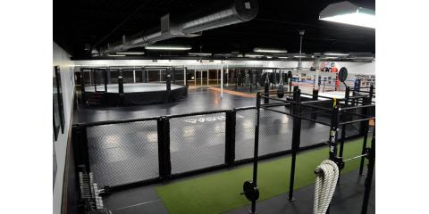 Nick Catone MMA & Fitness, Martial Arts, Services, Brick, New Jersey