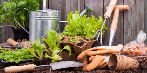 Your Local Hardware Store Outlines 3 Tips for Starting a Garden , Ludlow, Kentucky