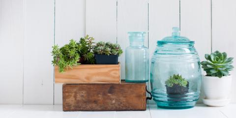 Bring Your Home to Life with Botanicals from Crate & Barrel , Boston, Massachusetts