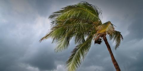 Hawaii Credit Union Explains How to Prepare Financially for Hurricane Season , Ewa, Hawaii