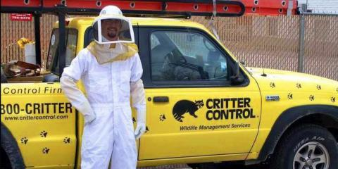 Critter Control of Madison Lists 5 Steps to Take After Pest Services Finish , Fitchburg, Wisconsin