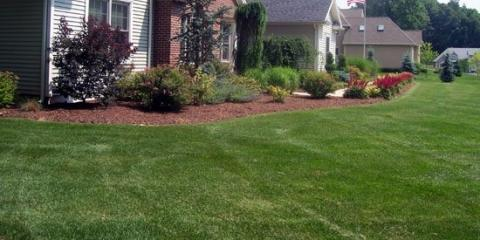 3 Ways Your Lawn Can Benefit From a Spring Dethatch, Cromwell, Connecticut