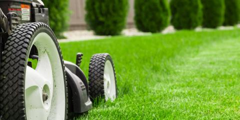 It's Not Too Late to Get the Summer Lawn Care You Need, Cromwell, Connecticut
