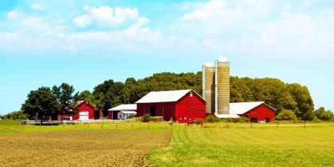 A Brief Guide to Flooding & Crop Loss in Nebraska, David City, Nebraska