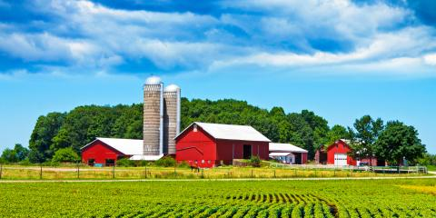 Top 3 Reasons to Purchase a Crop Insurance Plan, Black River Falls, Wisconsin