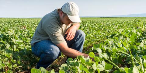 An Introductory Guide to Crop Insurance, Tecumseh, Nebraska